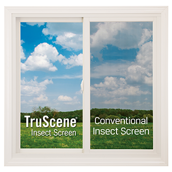 RBA-Blog-insect-screens-520